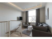 AMAZING~ NEWLY REFURBISHED ~1BEDROOM FLAT~AVAILABLE NOW~COUPLE WELCOME~FULLY FURNISHED~GYM~ROOF~