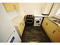 Good sized studio flat situated in Tulse Hill within only 15 minutes walk to Brixton