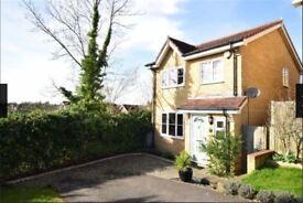 Double room in modern, 3 bed house. Quiet area, parking, garden, broadband. Mon-Fri preferred £100pw