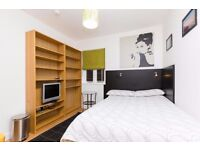 Nice, Comfy Studio Apartment in Hamsptead
