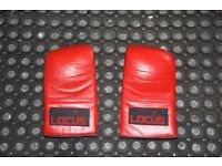 Locus lightweight boxing gloves / sparring gloves / punchbag gloves