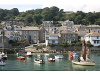 Spacious & light seaside house, Mousehole. Sleeps 6-8. Balcony, panoramic sea views. Pets welcome.