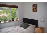 Spacious, bright flatshare in central Windsor