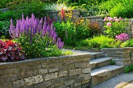 Garden Design & Landscaping Services