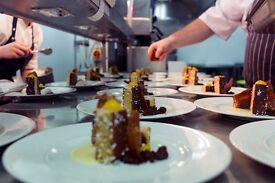 Experienced, Skilled, Calm and responsible freelance CHEF seeks next contract