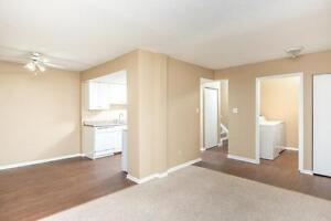 Amazing 3 bedroom Townhome! Pay only $800.00 for the first year! Edmonton Edmonton Area image 12