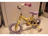 5 Year Old Girls Bike never used.