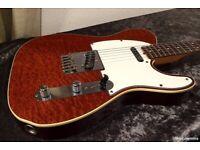 Tokai Breezysound TTE-60 TM Quilted Top Japan Telecaster Seymour Duncan Pickups 1981 Fender Beater
