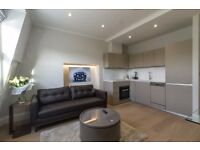 ELEGANT~1 BEDROOM FLAT~COUPLE WELCOME~AVAILABLE NOW~TOP FLOOR~LIFT~ROOF~PORTER~GYM~ MOVE IN NOW