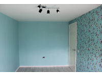Plastering/Painting and decorating/gypsum boarding/laminate floors/plumbing/house renovation