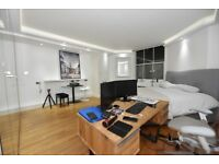 Well presented studio apartment to let in Notting Hill ,offered furnished short lets welcome