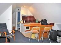 Studio flat in St. Petersburgh Place, Bayswater, London W2