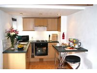 Compact Fully Furnished One Bedroom Country Cottage to Rent Close to Dartmouth and Totnes