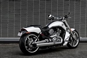 Wanted Harley Davidson VRod muscle