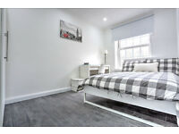 Lovely, modern flat share next to Oval tube available September. Call now to register your details