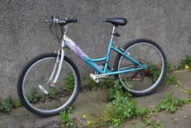 Childs Bike