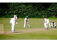 PLAYERS WANTED: Cricket club in North London