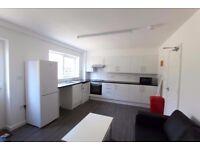 Student accommodation 4 bed flat, large garden Lorrimore Road Kennington (Available September 2018)