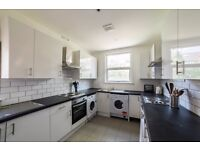 Lovely sunny room in recently refurbished flat available immediately at bargain rent !