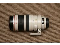 Canon EF 100-400mm F/4.5-5.6 L IS USM Lens