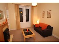 Bright 1 bedroom flat in Caledonian Crescent