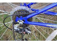"""Apollo Gradient, 18 speed boys' 24"""" mountain bike"""