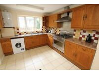 Spacious Four Double Bedroom House with Garden N8