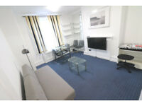 Luxurious, newly renovated 1 bedroom flat available in Brick Lane/Shoreditch, E1.