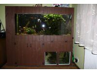 450l Complete Aquarium Setup