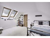 Bed/rug/runner/ottoman