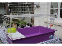 Two Rabbit/Guinea Pig cages (Can be sold separately)