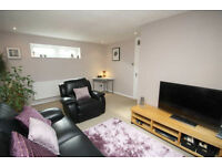 Newly decorated 1 Bedroom flat in Seven Kings part dss accepted with guarantor