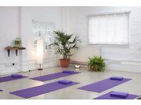 Free yoga in exchange for leafleting   Hackney   Newington Green
