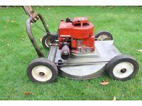 "HAYTERETTE 19"" rotary lawnmower"