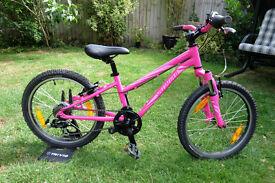 Girls Specialized Hotrock 20 6spd Kids Bike