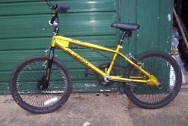 BMX Bike, Bullion - Silverfox, Gold with stunt pegs