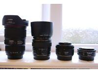 Canon lenses - 40 2.8 STM, 50 1.8 STM , 85 1.8 USM +Hood and 16-35 F4L IS