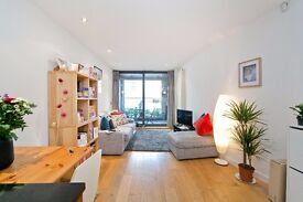 Stunning 1 bedroom apartment to rent on lovely Camden Mews, £375 pw!