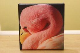 Flamingo Canvas picture, new
