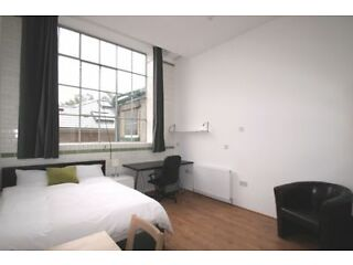 Studio flat in Thane Villas Finsbury park Islington Picture 6