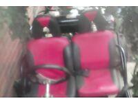 Quadzilla buggy 2015