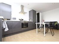 NEW FULLY FURNISHED DOUBLE ROOM IN A BRAND NEWLY REFURBISHED FLAT 210 PW