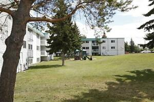 Big & Bright 3 Bedroom Apartment Available!