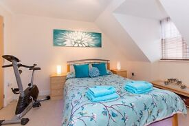 DOUBLE En-Suite room in New House. Professional Houseshare. All Bills Included.