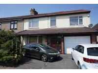 Wonderful 4 bedrooms Semi detached house with front Driveway & back garden AVAILABLE NOW