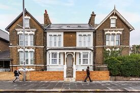 one bedroom flat in leyton