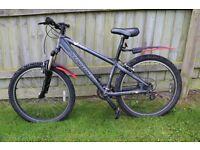 SARACEN XRAY mountain bike