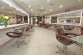 Hair Stylist - Senior Stylists, £9 - £10.50 an hr Mayfair & Richmond