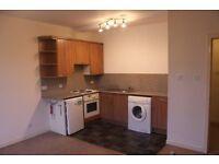 Brechin, Angus DD9 7DZ. Ground flr flat, great cond'n & locat'n, elec heat, dble glazed, £280pcm
