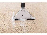 Award-Winning Carpet Cleaning, Rug Cleaning Company, First-Class Service from the Experts